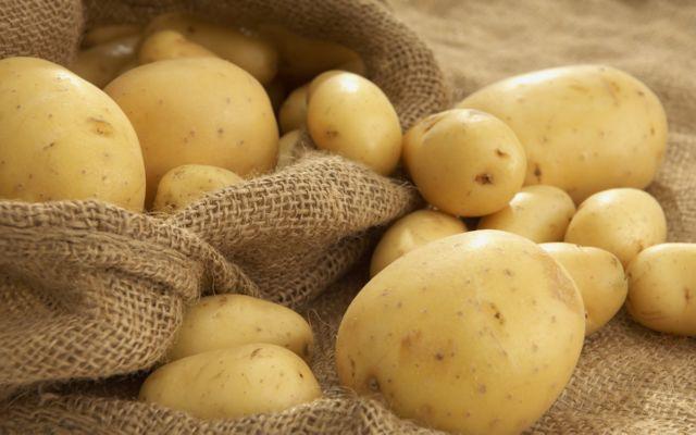 Кто ест картофель в земле, прям выгрызает, и как бороться