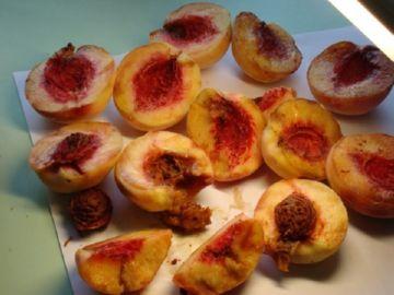 Зараженные персики
