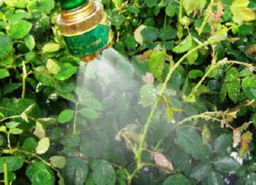 Использование инсектицидов