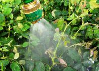 химический метод защиты растений