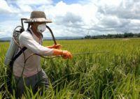 агротехнический метод защиты растений