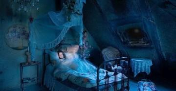 Сновидения о клопах
