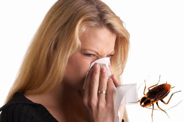 Чем опасны домашние тараканы для человека