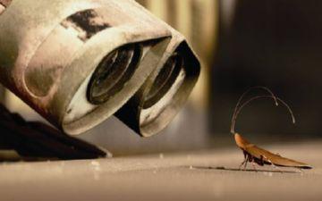 мифы о тараканах