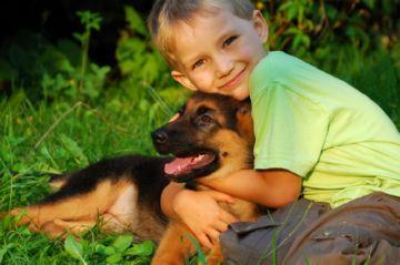 передаются ли вши от собаки к человеку