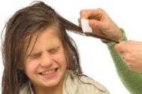 как избавиться от вшей и гнид навсегда за 1 день в домашних условиях