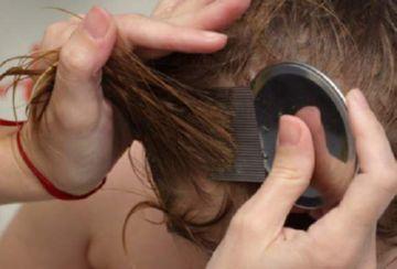 прочесывание волос