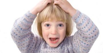 болезни, которые переносят вши